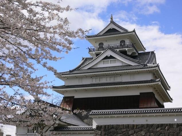 上山市 上山城 月岡公園 桜