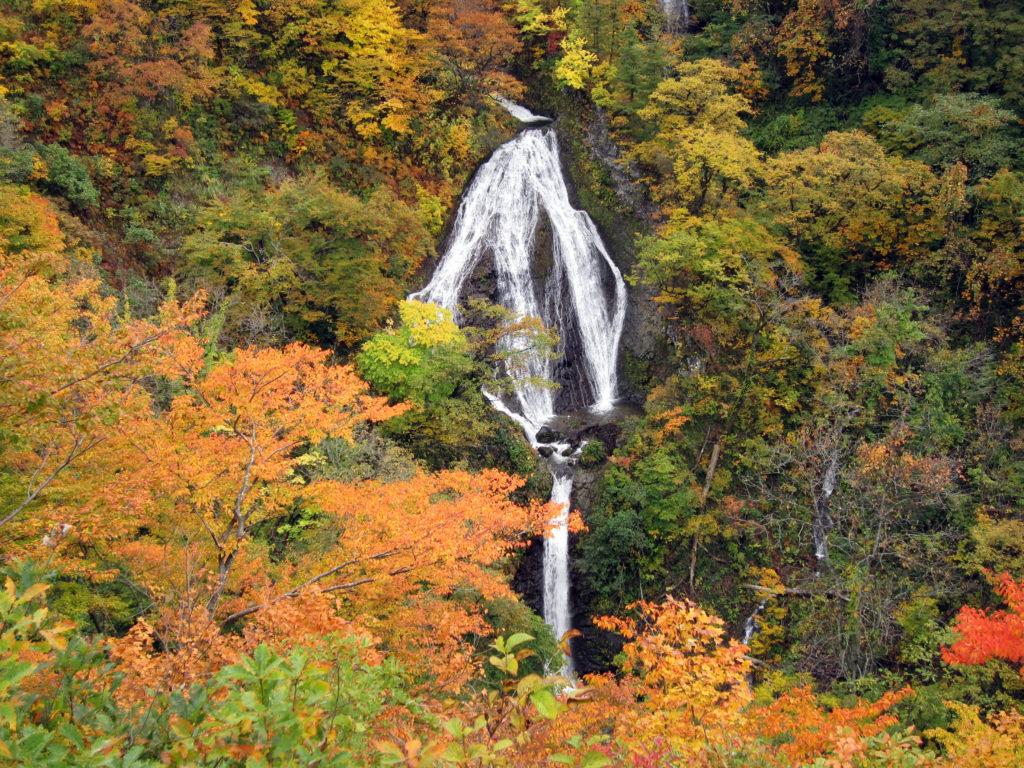 七ツ滝公園 紅葉
