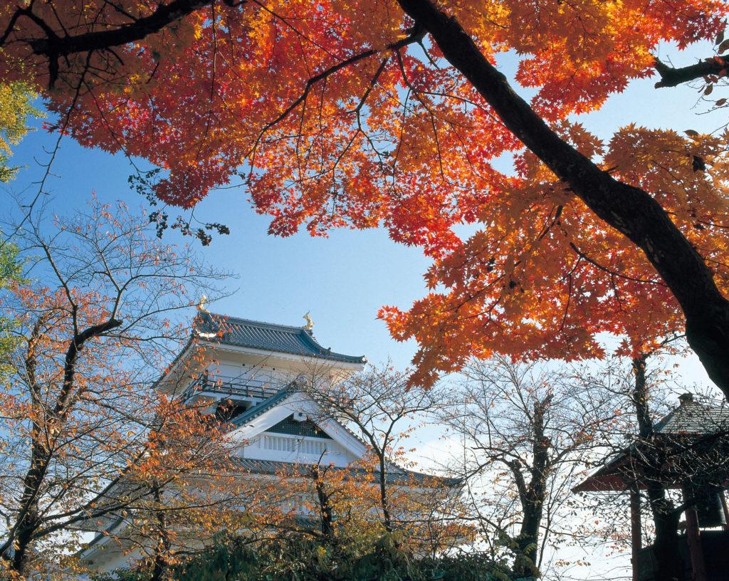 上山城 紅葉
