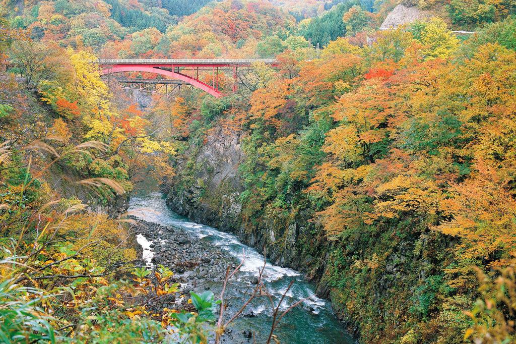 梵字川渓谷 紅葉