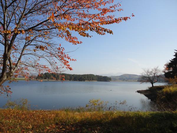 尾花沢市 徳良湖
