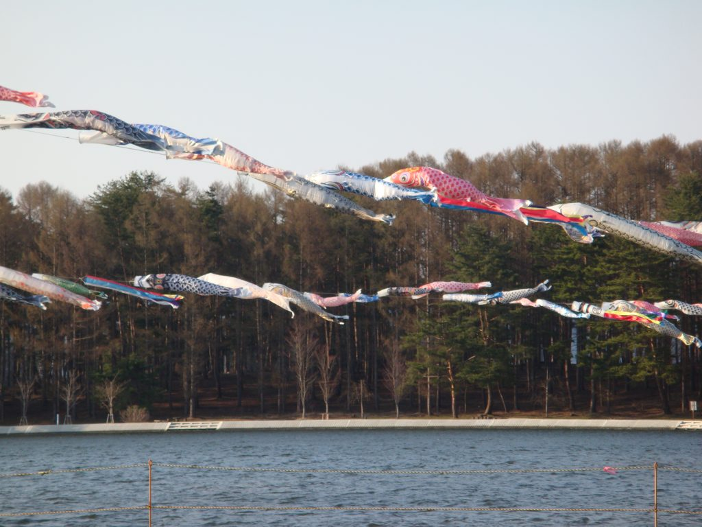 こいのぼり スポット 山形 尾花沢市 徳良湖