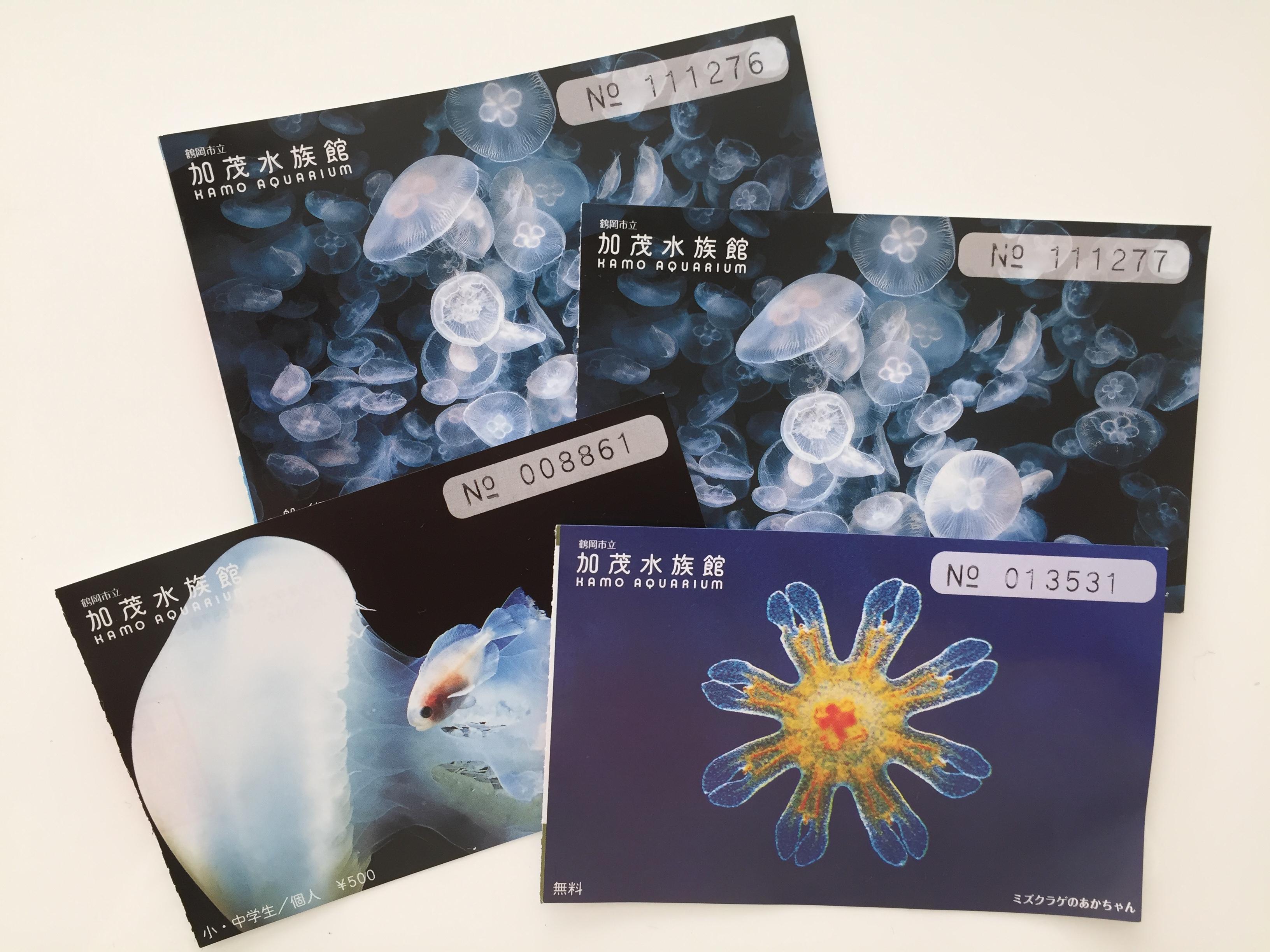 加茂水族館 チケット